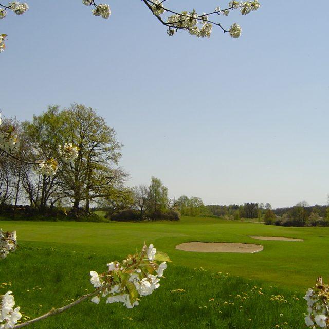 Golf på Skepparslövs Golfklubb